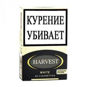 Сигареты Harvest KS White